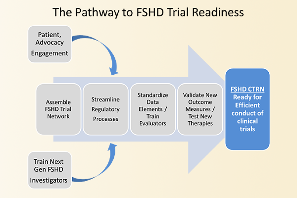 Diagram of FSHD Trial Readiness pathway