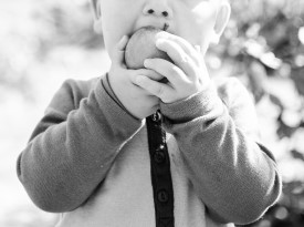 Boy biting into an apple